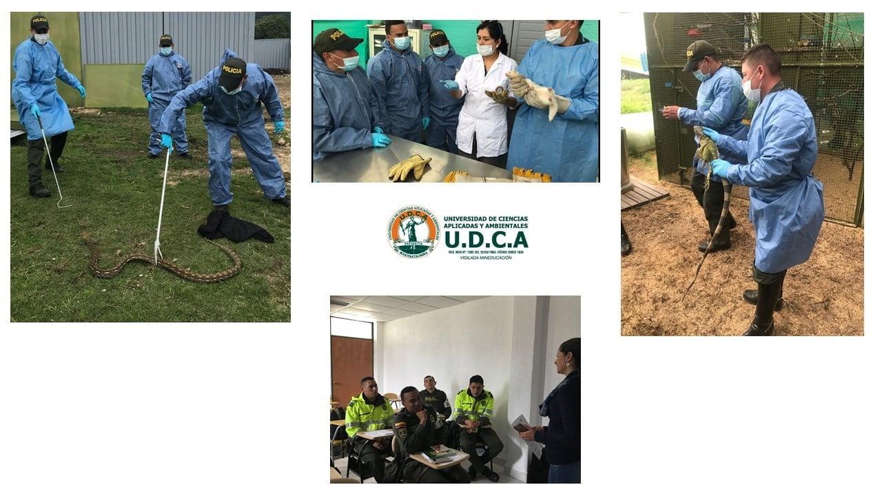 Capacitación a la Policía Metropolitana de Bogotá en manejo de especies silvestres y domésticas