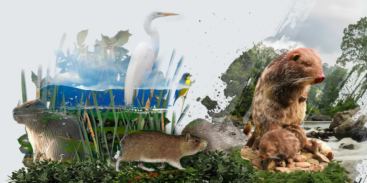 Sobre Biodiversidad: un artículo científico que invita a leer y pensar